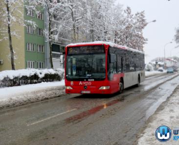 11.01.21 - zimska sluzba i trasport putnika - 9